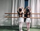 南京莙蕾舞苑专业芭蕾舞 针对性教学 包教会