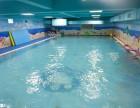 大连儿童游泳暑假班 暑假贝贝鲸儿童游泳培训