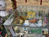 北京宠物殡葬服务7 24宠物墓地骨灰寄存