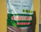 巢湖硅藻泥技术培训 安徽硅藻泥施工工具 山东硅藻泥