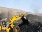 批发零售各种钢炭,自然煤,烤火煤