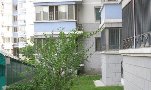 三里河二区 精装两居室 木樨地站 业主自住房