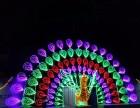 玫瑰花海出售亮化灯光工程灯光展创意灯光秀