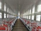 猪场 齐齐哈尔甘南县宝山乡 厂房 30000平米