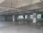 福永 白石厦新出楼上2300平面积实在厂房出租