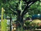 梨树北方巴厘岛水上乐园