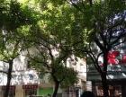 胜利南路盆景园附近年租22万,临街上下两层门面出