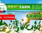 福建泥鳅养殖选择江苏聚农10号泥鳅养殖基地