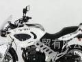 天津最大仓储式销售,摩托车大展销 最大优惠2000