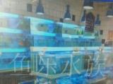 承接各种水族工程,定做鱼缸,海鲜池