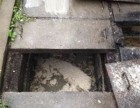 仙居横溪工业区污水池清理