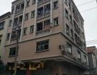 东莞厚街 1080平米 出售东莞厚街
