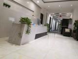 舜泰广场精装办公室,300元每月,还送免租,按日起租可注册