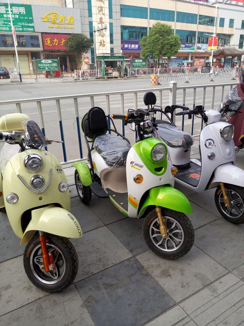 罗城电动车哪个品牌好 罗城电动车多少钱 罗城电动车价钱便宜