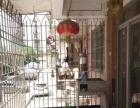 临近宝龙江滨 同德园 居家大三房 设备齐全 房东着急出租