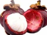 新鲜水果进口备案报检操作 越南山竹进口流程手续 广州进口报关