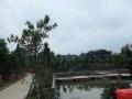 秣陵 建农社区农庄房子 仓库 400平米