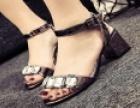 艾罗拉女鞋 诚邀加盟
