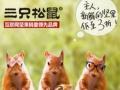 三只松鼠干果零食店加盟