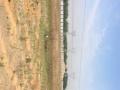 东盐务 高速东出口 南一公里 土地 300平米
