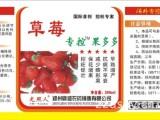 草莓保花增果好农药 草莓专用控旺好农药 控旺促壮减少畸形果