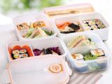 批发采购振兴FH984 两格塑料饭盒  便当盒 排气孔厨房储物盒