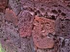 厂家供应 火山石 红色火山石 黑色火山石 多空火山石 等