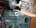 出1.250的上虑鱼缸