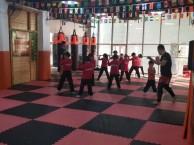 天津市青少年儿童武术散打暑假培训班