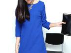 厂家直销2014秋季新款欧洲站女装显瘦多色小A型品牌连衣裙裙子