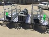猪场使用的铸铁板母猪产床设备及配件哪里生产