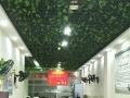 儒林路中国人寿保险对面 商业街卖场 87平米
