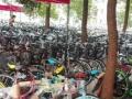 仓库拆迁全部自行车都是特价