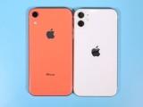 iphone 8p按鍵失靈 原因