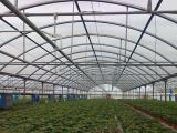 智能连栋温室大棚建造找瑞科温室-北京连栋温室大棚建造