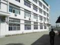 福永国道边精装修1600平米厂房转让
