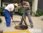 专业疏通管道,地漏,马桶维修,水管修理,化粪池清理