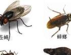 海侨公司全力配合政府开展市区灭蟑螂、蚂蚁入户行动