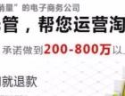 武汉淘宝商城代运营打造爆款店铺装修按效果付费保销量