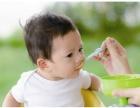 大连进口婴幼儿辅食标签备案与流程