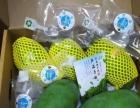 海南热带水果批发送货上门