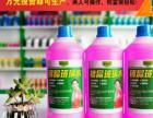 青岛玻璃水机器价格|玻璃水机器加工厂|送技术