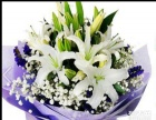 靖远县城内订购各类鲜花提供各种鲜花的配送服务鲜花定