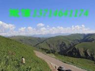 想去新疆的朋友看过来!新疆伊犁!自驾!组团!伊犁深度游