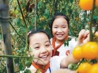 深圳亲子团队秋游、家庭周末休闲游、家庭CS野战一日