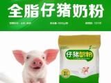 小猪缺奶问题