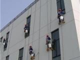 河南外露型防水涂料,巴斯夫防水科技供应划算的外墙透明防水涂料