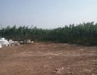 科力加油站附近场地出租 土地 500平米