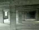 九龙集 厂房 500平米
