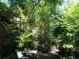 出租民宿道理花园聚会场地(1580吃喝唱在一起)